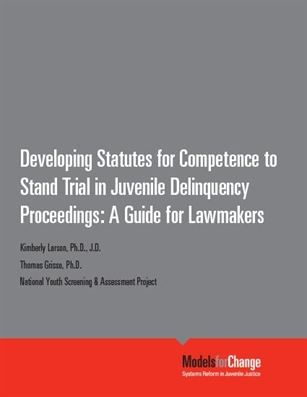 DevelopingStatutes